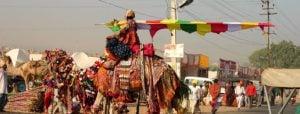 India del Nord e Rajasthan